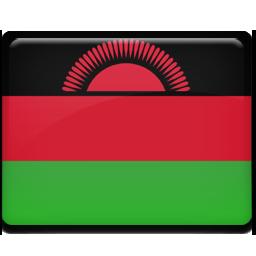 Malawi flag 256