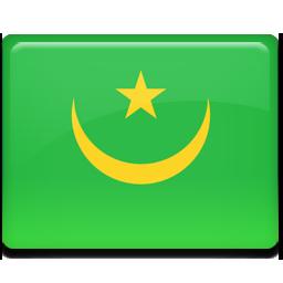 Mauritania flag 256