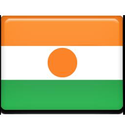 Niger flag 256