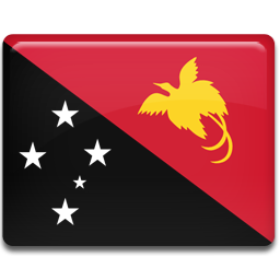 Papua new guinea flag 256