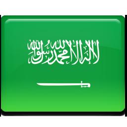Saudi arabia flag 256