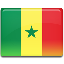 Senegal flag 256