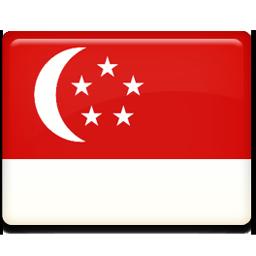 Singapore flag 256