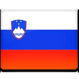 Slovenia flag 256
