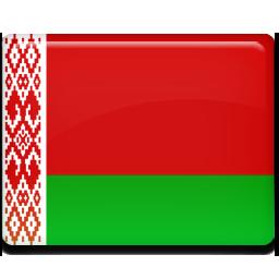 Belarus flag 256