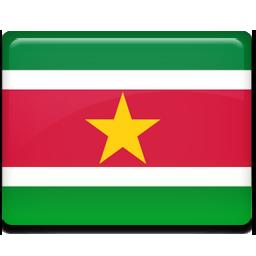 Suriname flag 256