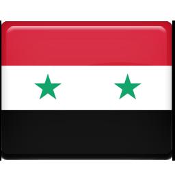 Syria flag 256