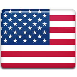 United states flag 256