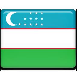 Uzbekistan flag 256