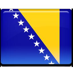 Bosnian flag 256