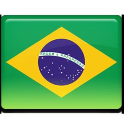 Brazil flag 256