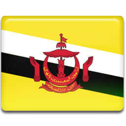Brunei flag 256