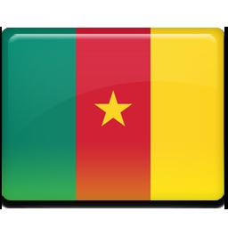 Cameroon flag 256