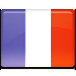 France flag 256