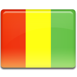 Guinea flag 256