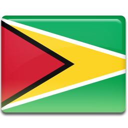 Guyana flag 256