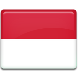 Indonesia flag 256